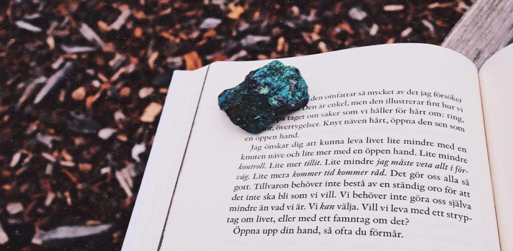 Björn Natthiko Lindeblad – Leva livet mindre med en knuten näve, mer med en öppen hand